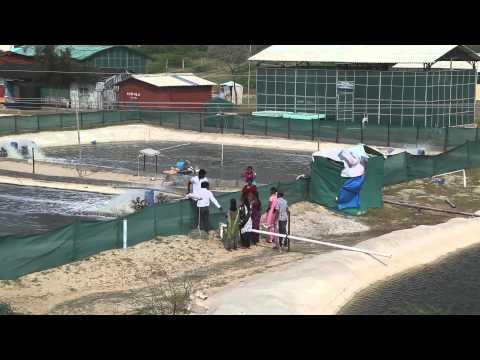 TamilNadu Fisheries University - Facilities