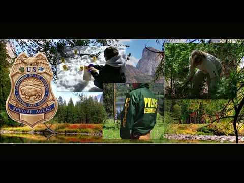 411 missing Einzelfälle und Verbindungen