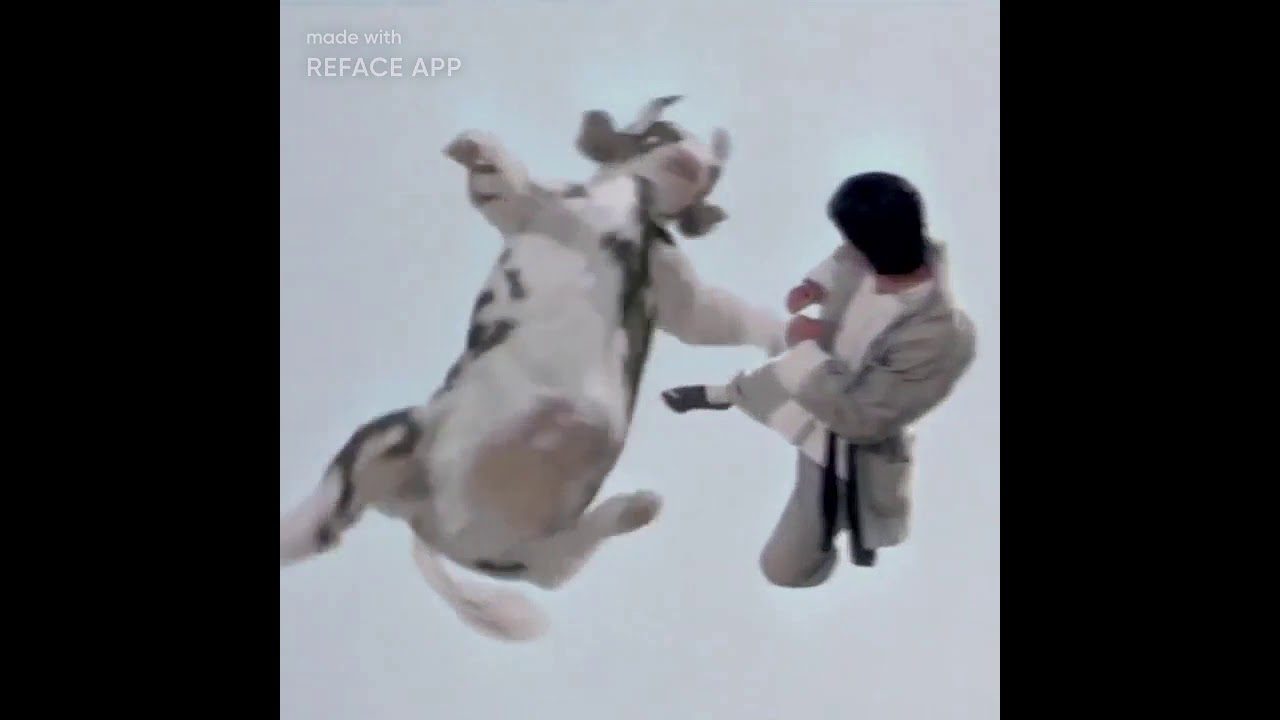 Download Kung Pow: Enter the Fist cow fight #reface