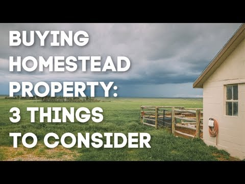 3 Things You MUST Consider When You Buy a HOMESTEAD