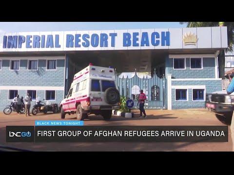 51 Afghan Refugees in Uganda, Afghan School for Girls Relocate to Rwanda