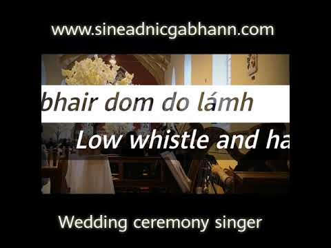 tabhair-dom-do-lámh---harp-and-low-whistle-combo