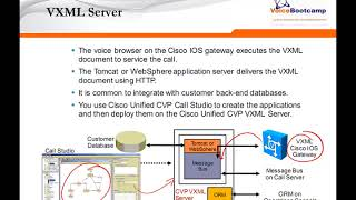 Chapter 2 Cisco Unified CVP Native Component