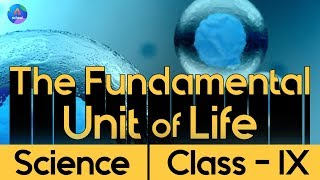 Class 9th | Science | Chapter 2- The Fundamental Unit of Life | Day 1.1