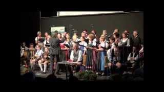 Geh du kreizsaubers Dirndl | Chorgemeinschaft Wildon | Leitung: Dir. Mag. Johann Assinger