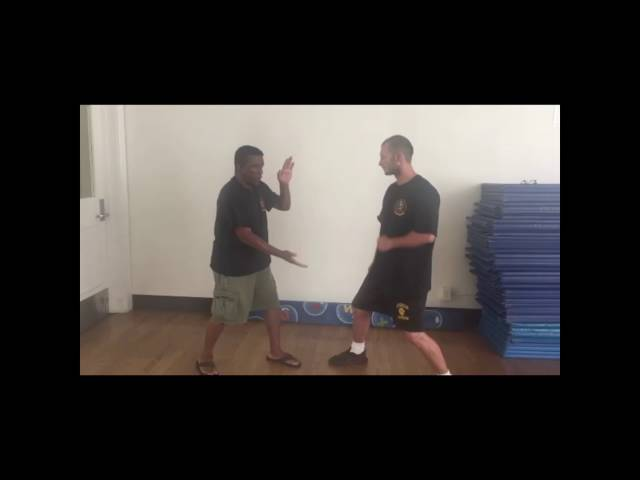 Wing Chun 2nd form insights
