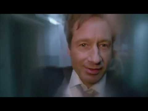 Anarchosophist - Disco Duchovny: An X Files Tribute
