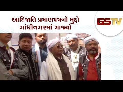 Gandhinagar : આદિજાતિ પ્રમાણપત્રનો મુદ્દો ગાંધીનગરમાં ગાજ્યો | Gstv Gujarati News