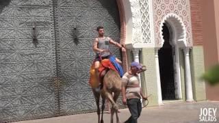 ТОП ПРАНК - Шкуре не нужен верблюд, а нужен Бентли