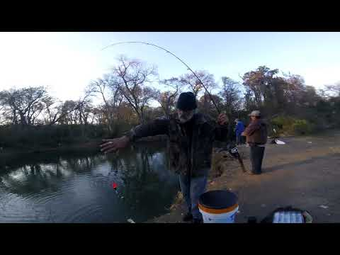 BANK FISHING AT WHITE ROCK CREEK