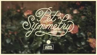 Pet Symmetry - Vision [FULL ALBUM STREAM]