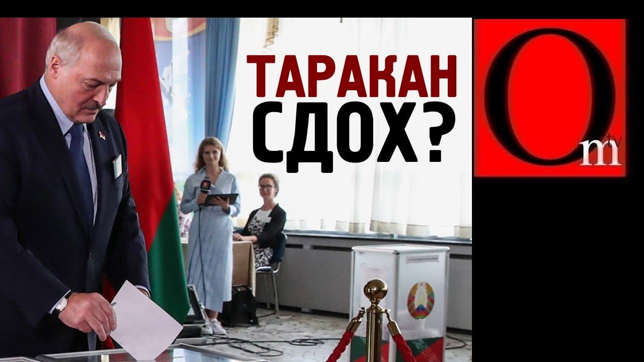 Лукашенко хватил припадок - давить всех, как тараканов!
