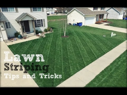 Lawn Striping – How To Achieve The Best Stripes In Your Lawn