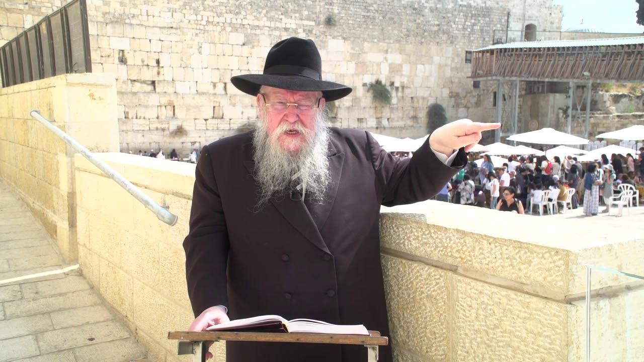 הרב בוטמן פרשת נח   עברית