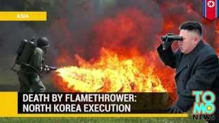 Огнемётная казнь, или новые художества Кима