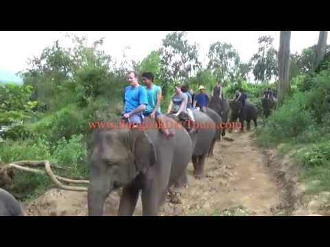 1-elephant-thailand-tour-via-bangkok-day-tours-(original-only-by-bangkokdaytours-ltd.!)