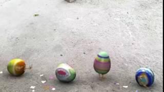 FxGuru Video troll egg funny girl