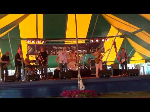 Transit Authority-The Premier Chicago Tribute Band