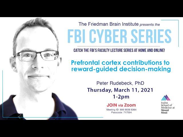 FBI Cyber Series - by Peter Rudebeck, PhD