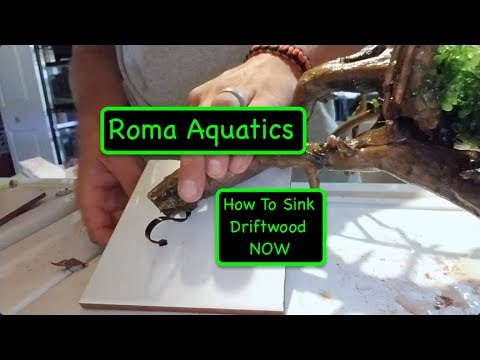 Floating Driftwood, Oh No! - How To Sink Driftwood Without The Wait  - Zip Tie & Tile 🆒