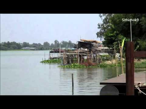 แม่น้ำเจ้าพระยา จ.อยุธยา วิว ธรรมชาติ เสี่ยงน้ำไหล เสียงนกร้อง สบายใจมากๆ ; Chao Phraya River