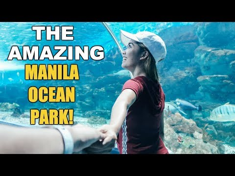 A MUST SEE In MANILA PHILIPPINES | Manila Ocean Park Is Amazing!!!