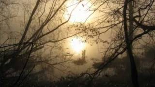 Melancholy -  C. HANOT - Musique : NARSILION (Autumnal Equinox)