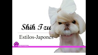 shih tzu estilos japones cortes pink poodle costa rica peluqueria