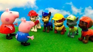 Paw Patrol i Świnka Peppa ☺ Pomocy George jest na drzewie ☺ Bajka dla dzieci PO POLSKU