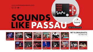 Sounds Like Passau Sampler • Support Your Local Artists