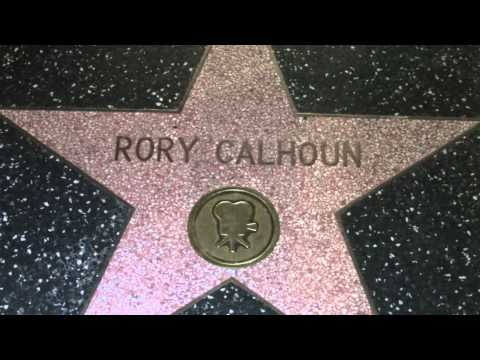 Rory Calhoun Hollywood Walk Of Fame Star