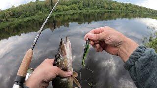 Спиннинг с берега Вечерний клёв Ловля щуки на спиннинг весной Рыбалка на щуку Спиннинг 2020