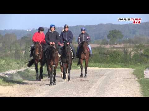 Paris-Turf TV - GSCP : Milord Thomas