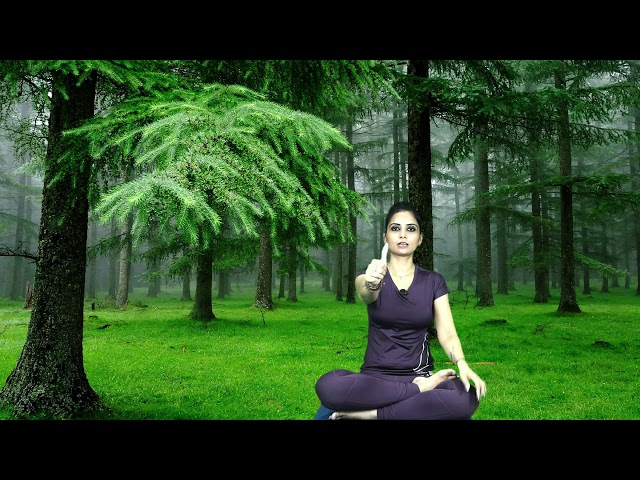 Simple trick to increase concentration   Dr. Kashika Jain   Positive Meerut