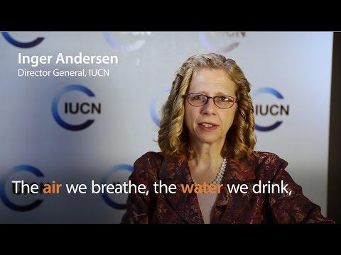 Inger Andersen – IUCN World Conservation Congress 2016