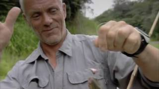 Речные монстры пирания Discovery Rechnye monstry 1 sezon 1 serija iz 7 Pirani 2009 XviD SATRip