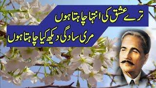 Tere Ishq ki intaha chahta hon | Allama Iqbal | Urdu Ghazal | Sad Poetry |