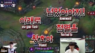 SKT T1 Faker : November 15th stream highlight [I