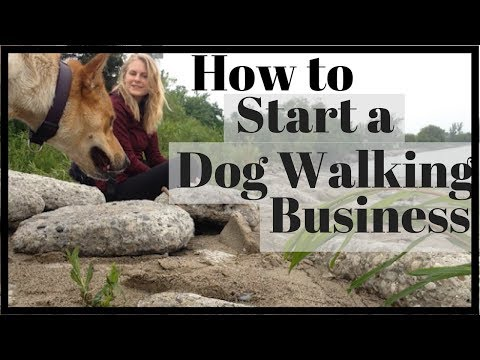 HOW TO START A DOG WALKING BUSINESS | InRuffCompany.com