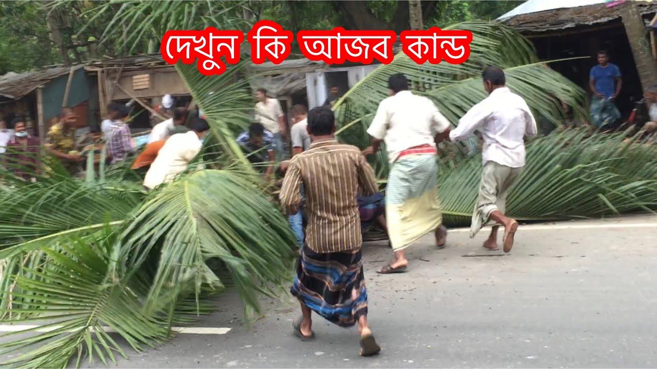দেখুন কি আজব কান্ড  ! বুলডোজার VS নারকেল গাছ Ruhul Khan USA