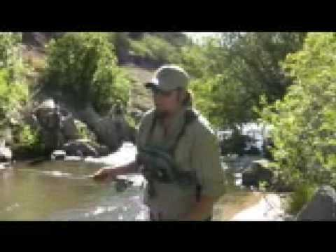 Fishing new mexico the cimarron river w red river for Red river new mexico fishing