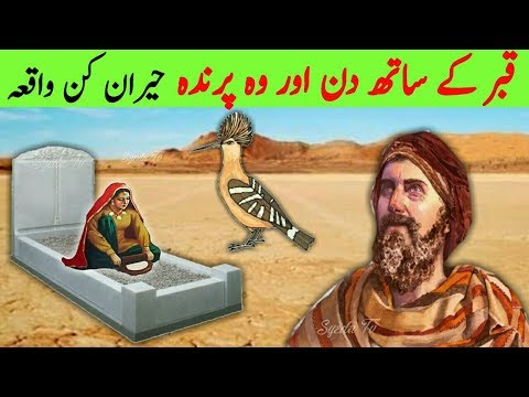 Qabar ke 7 Din AUR Wo Parinda || 7 days Of Grave and Bird || Al Quran || قصة القرآن || محمد || Allah