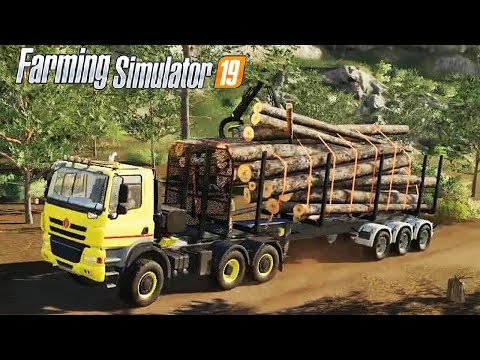 FARMING SIMULATOR 19 #104 - CARRELLO AUTO CARICANTE LEGNA - GAMEPLAY ITA
