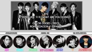 "BTS (방탄소년단) ""Interlude: 뭐해 (What Are You Doing)"" [COLOR CODED] [ROM
