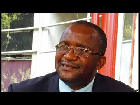 Douglas Mwonzora: MDC Constitution & Two Vice Presidents (Aug 2016)