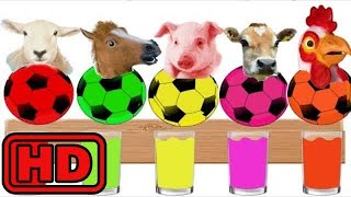 Kid -Kids -Learn FARM Animal Name And Sound With Color Water Slime Surprise Soccer Balls /Alien Dan