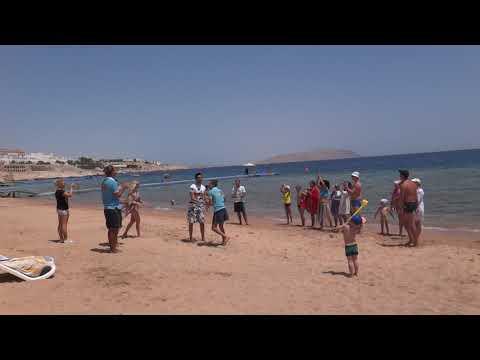 Египет Отель Island View Resort 5* Что на пляже  Sharm El Sheikh