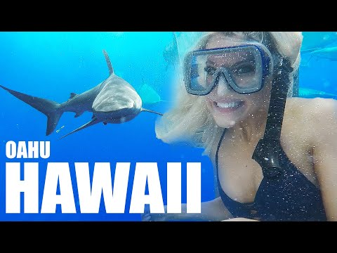 Oahu Hawaii Travel Guide- WOW! Things to do in Vacation Vlog Trip. What Places to Tour, Visit, See.