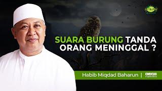 Download Suara Burung Tanda Orang Meninggal ? // Habib Miqdad Baharun