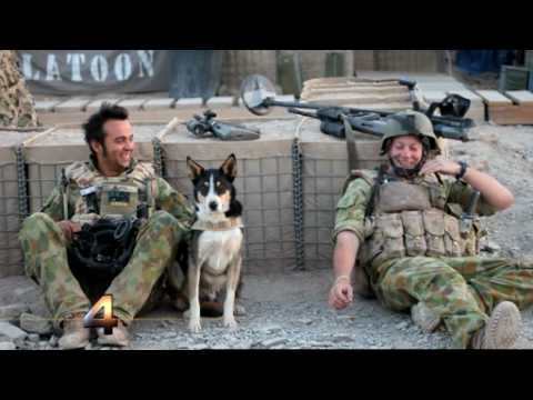 Chris Masters reports from Afghanistan | FOUR CORNERS: A Careful War Part 1 -  8.30pm ABC1